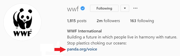 An example of a brand using a link in their Instagram bio.